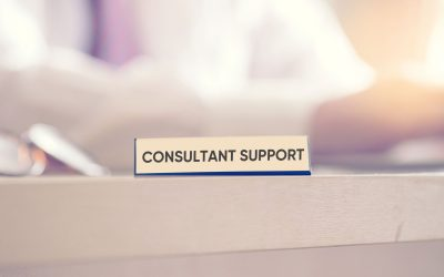 Consultant(e) support Datameal